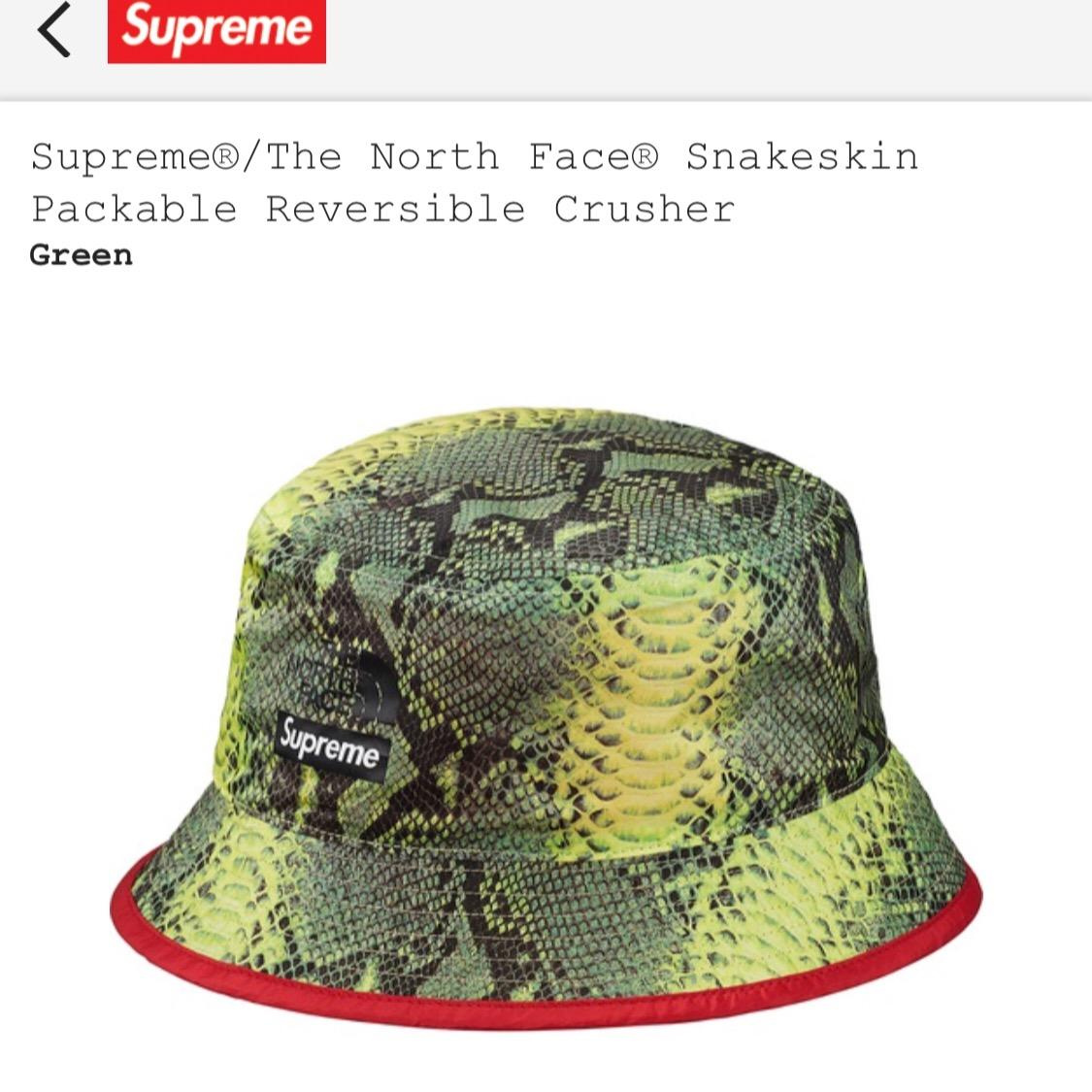 52371be2d2a4c Supreme X The North Face snakeskin reversible packable crusher ...