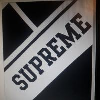 Supreme ;diagonal hooded; | Image 2