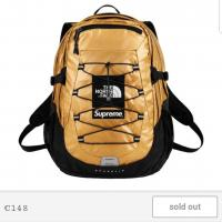 Supreme X North Face Borealis Backpack gold | Image 1