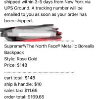 Supreme The north Face Backpack rose gold  | Image 2