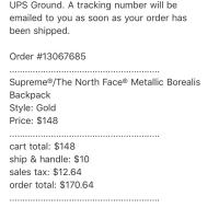 Gold Supreme®/The North Face® Metallic Borealis Backpack | Image 2