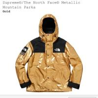 Supreme x the north face metallic parka  | Image 1