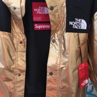 Supreme x The North Face Metallic Mountain Parka | Image 1