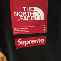 Supreme x The North Face Metallic Mountain Parka | Image 2