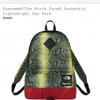 Supreme X The North Face Snakeskin lightweight day bag | Image 3