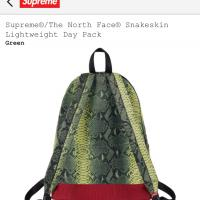 Supreme X The North Face Snakeskin lightweight day bag | Image 4