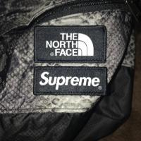 Supreme X The North Face Snakeskin Lightweight Day Pack | Image 3