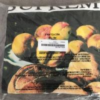 Supreme Still Life Tee White Xlarge FW18 Week 1 Sold Out In hand | Image 2