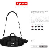 Supreme FW18 Black North Face Leather Mountain Waist Bag | Image 1