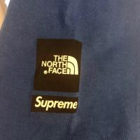 Supreme x TNF Mountain Tee | Image 2