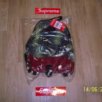 Supreme X The North Face Snakeskin Lightweight Backpack | Image 1
