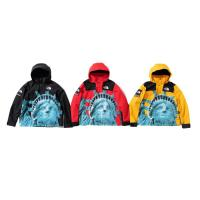 Supreme The North Face Statue of Liberty Mountain Jacket Black FW19 XL | Image 1